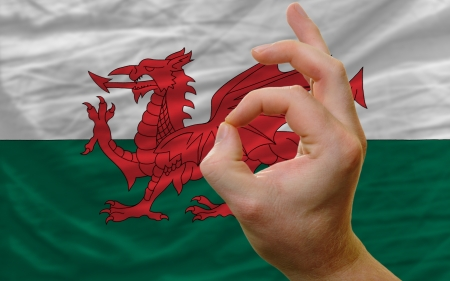man showing excellence or ok gesture in front of complete wavy wales national flag of  symbolizing best quality, positivity and succes Stock Photo - 14427937