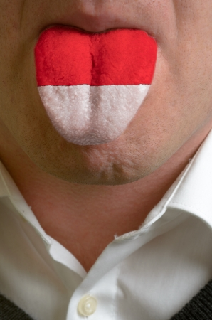 man with open mouth spreading tongue colored in indonesia flag as symbol of values like teaching, learning, multilingual speaking of different languages Stock Photo - 15002819