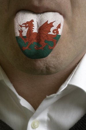 man wit open mouth spreading tongue colored in wales flag as symbol of values like teaching, learning, multilingual speaking different of languages Stock Photo - 15002746