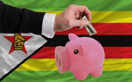 Man putting dollar into piggy rich bank national flag of zimbabwe in foreign currency because of inflation photo