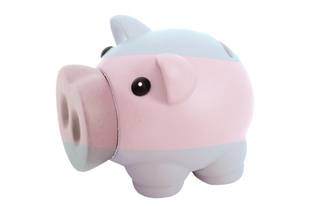 piggy rich bank in colors national flag of argentina for savings on white background photo