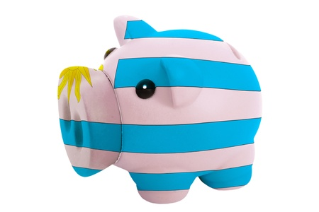 piggy rich bank in colors national flag of uruguay for savings on white background photo