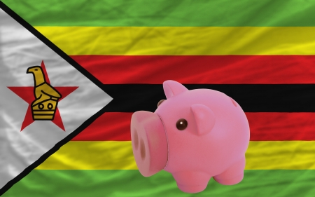 piktogramm: Piggy rich bank in front of national flag of zimbabwe symbolizing saving and accumulating funds as good financial habit Stock Photo