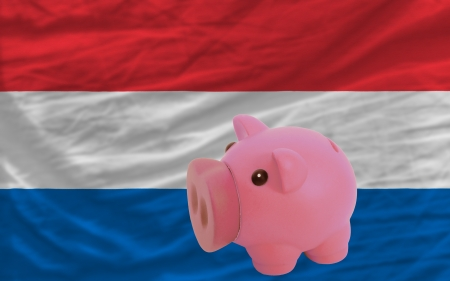 accumulating: Piggy rich bank in front of national flag of netherlands symbolizing saving and accumulating funds as good financial habit