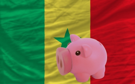 piktogramm: Piggy rich bank in front of national flag of senegal symbolizing saving and accumulating funds as good financial habit