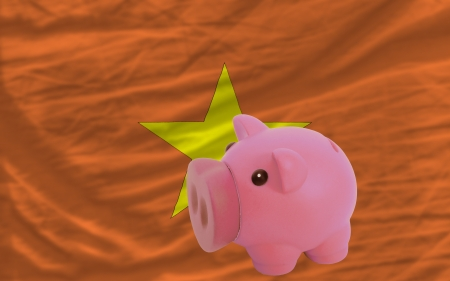 accumulating: Piggy rich bank in front of national flag of vietnam symbolizing saving and accumulating funds as good financial habit