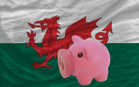 accumulating: Piggy rich bank in front of national flag of wales symbolizing saving and accumulating funds as good financial habit