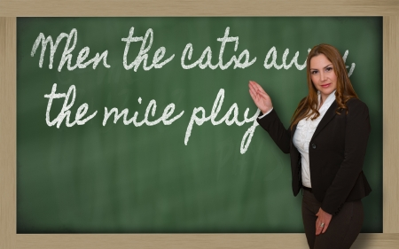 Successful, beautiful and confident woman showing When the cat s away, the mice play on blackboard Stock Photo - 18708140
