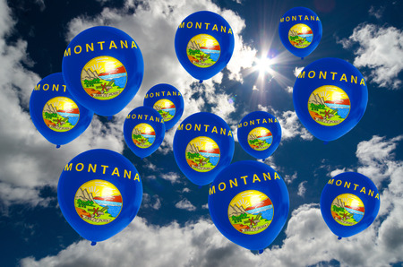 many balloons in colors of montana flag flying on sky