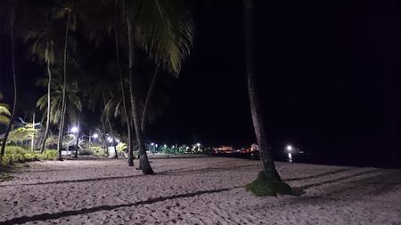 caribe: Night, illuminated beach