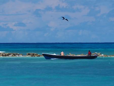 caribe: Fishing boat is gazed by a gull