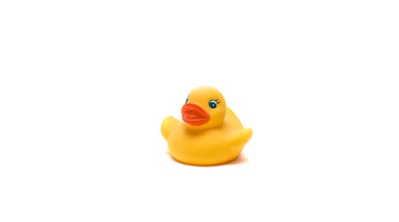 Yellow duck for a bathroom on a white background, isolate