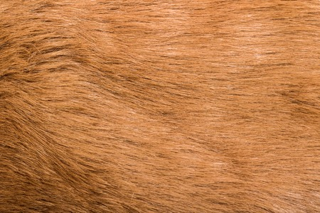 Texture of brown smooth wool, artificial fur, fur coat, background Stock Photo
