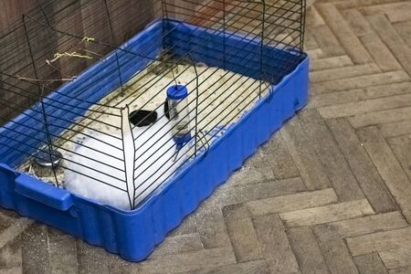 Cage with a rabbit on a wooden floor close up