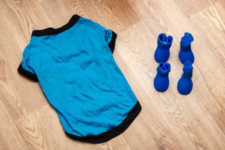 Blue shoes and closhes for dog on wooden background