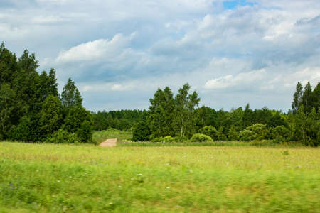 Green field and forest under a cloudy blue sky 스톡 콘텐츠