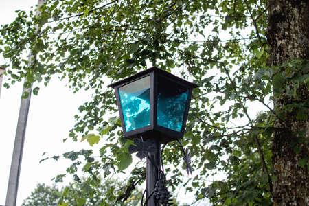 Retro style glass lantern among tree branches close up