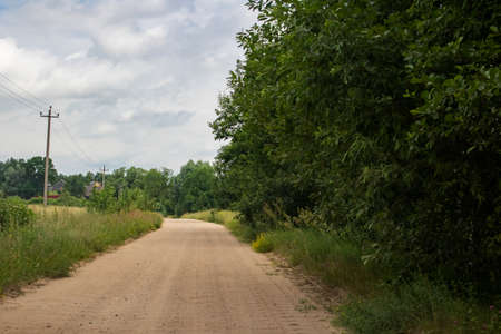 Rural sandy road among field and forest