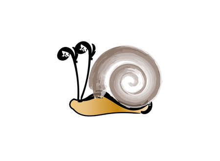 Brown snail on a white background, vector illustration