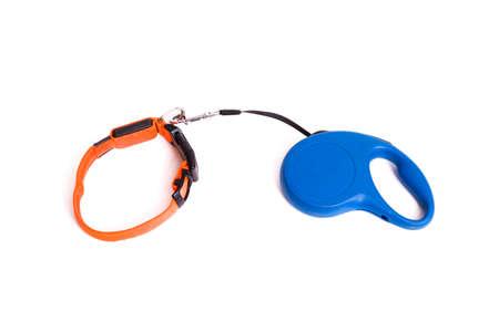 Orange collar and leashfor dog isolated on a white background 版權商用圖片