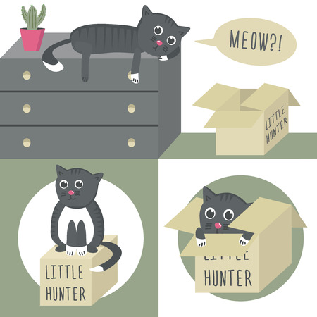 whisker characters: The cat on the dresser. Little hunter. The cat in the box.