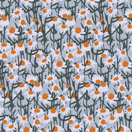 Camomile field seamless pattern on gray background