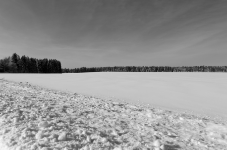 snowy field: Snowy field  in winter, black and white photo Stock Photo