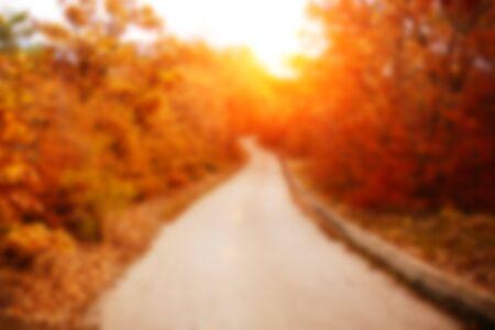 Sunrise in autumn forest. Tilt-shift lens. Blur.