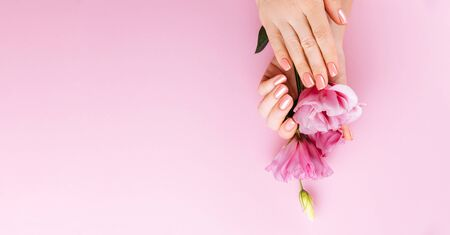 Beautiful Woman Hands with fresh eustoma. Spa and Manicure concept. Female hands with pink manicure. Soft skin, skincare concept. Beauty nails. Over beige background