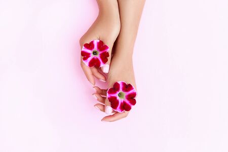 Beautiful, perfect, groomed womans hands with light pink nails holding a purple orchid flower. Manicure, pedicure beauty salon concept. Empty place for text or logo on pastel background.