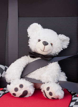 Plush white toy teddy bear teaching road safety strapped into the passenger seat in a car while taking a drive