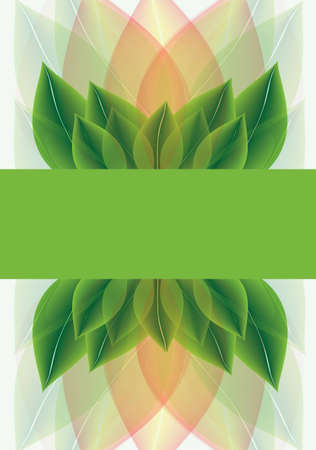 Botanical background of overlapping stylised leaves fading from a fresh spring green through orange to pastel mint with a central blank banner for your text Stock Photo - 14792874