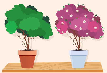A green tree in a brown pot and a pink tree with white flowers in a white pot