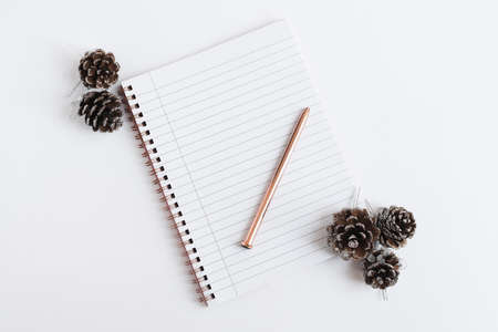 Notebook with clean pages, pen for writing and decorative pine cones on white background. Winter holidays planning Stok Fotoğraf