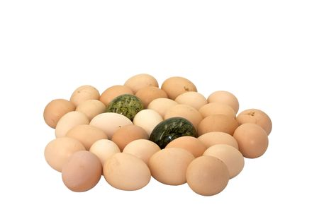 chicken eggs and eggs from malachite stones Stock Photo - 4578533