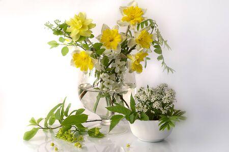 Ramo de hermosas flores de primavera en un florero. Flores de primavera en naturalezas muertas. Foto de archivo