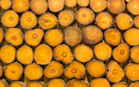 teakwood: Texture of yellow teakwood so beautiful Stock Photo