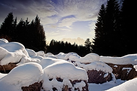 sunset and winter landcape photo