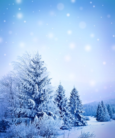 winter landscape with empty space for text Stock Photo - 12653281