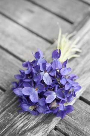 spring bouquet of violets on old wooden table photo