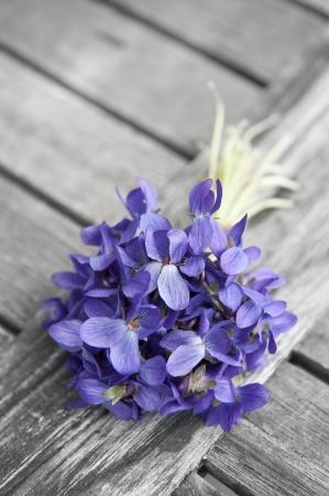 Våren bukett violer på gammalt träbord