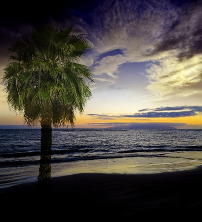 exotic sunset  Stock Photo - 13372086