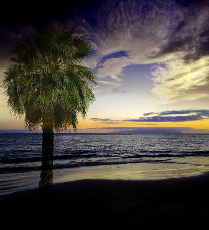 exotic sunset Stock Photo - 13372086