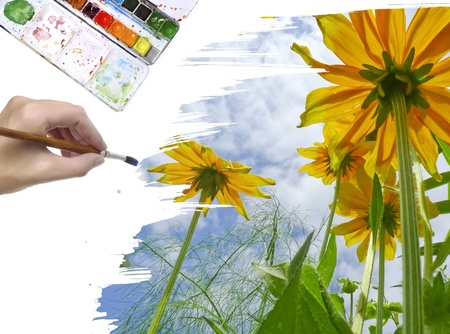 hand painting yellow flowers and blue sky photo