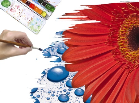 hand painting red flower photo