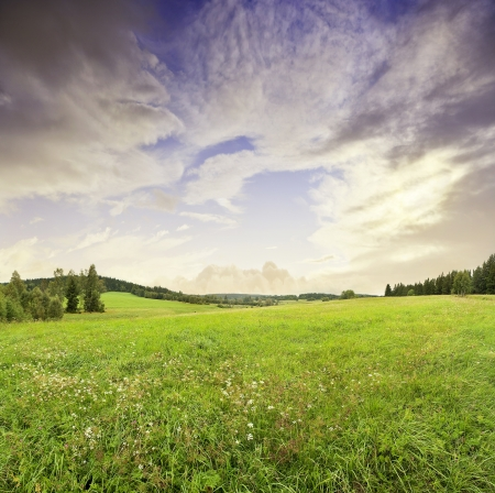 sunrise and summer meadow Stock Photo - 14961275