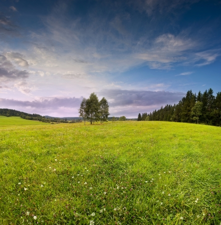 sunset and summer meadow - countryside Stock Photo - 14961277