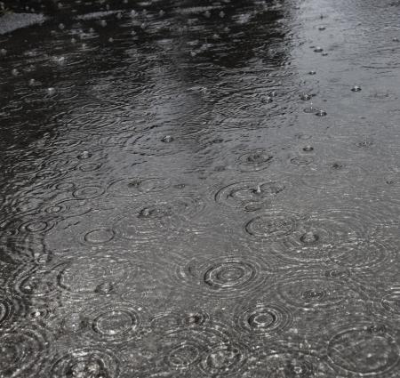 rain on a street  photo