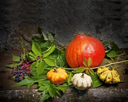 indian thanksgiving: still life with pumpkins
