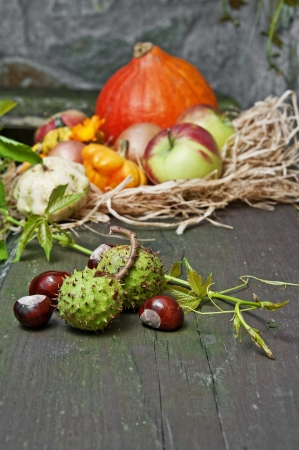 autumn still life with autumn flowers and pumpkins and chestnut photo